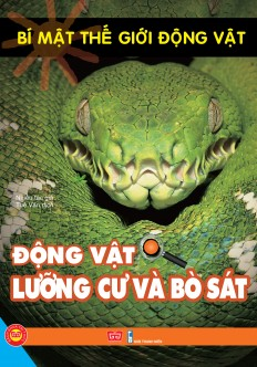 2d-bia-2-bo-sat-luong-cu-1.jpg