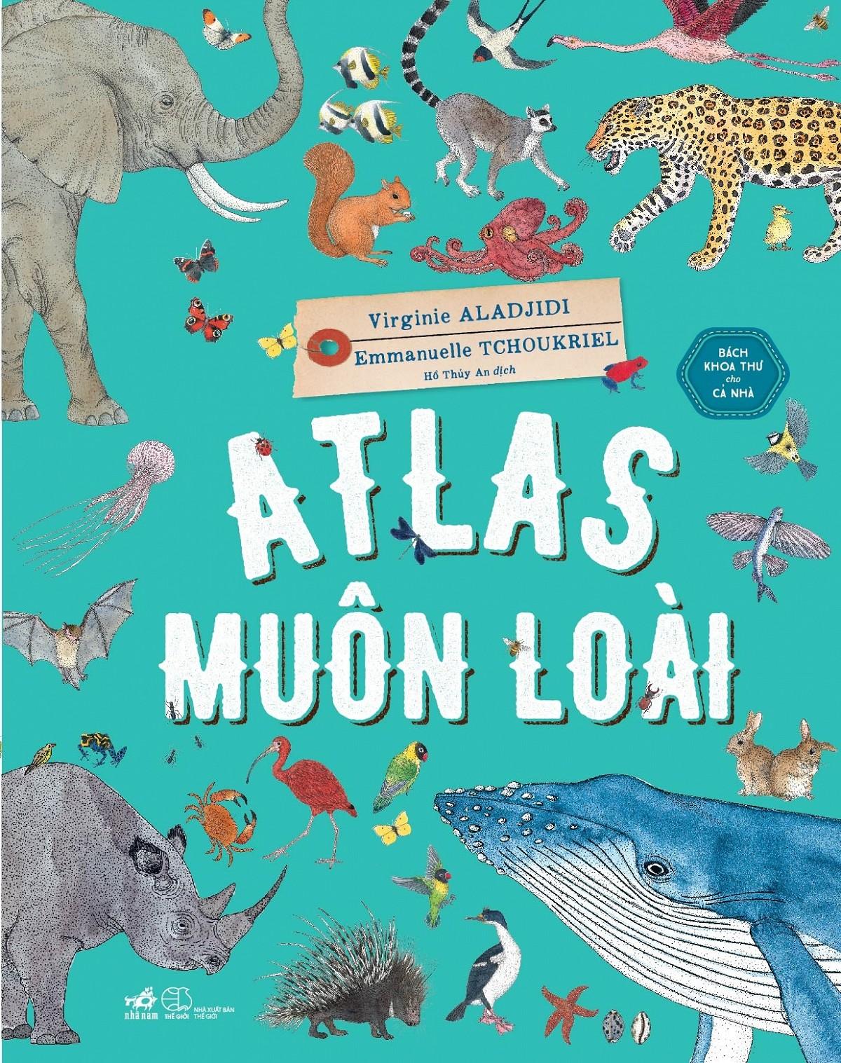 atlas-muon-loai.u547.d20170222.t083033.470385.jpg